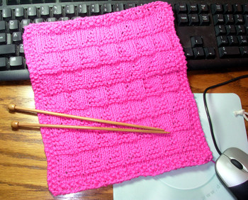 Annes_dishcloth_2